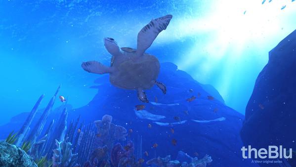 theBlue Turtles